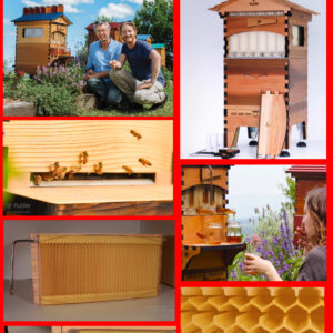 After taking a look at the most relevant components , you will find that this product prototype is made with just two components , the wood component forming the structure housing the plastic component which in turn is forming the honey comb .The plastic component can be made with an affordable 3D printer , costing between 300 to 500 $, as for the wood component , it is the most cheaper component thanks to some available affordable wood working tools designed for various projects , you can watch the video below of some ten best wood working tools .
