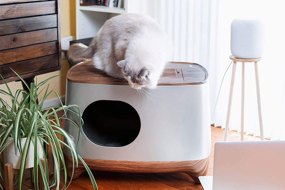 Ikuddle : auto pack cat litter box